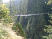 005 Capilano Canyon