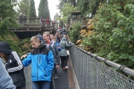 008 Capilano Canyon